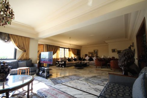 coeur-de-racine-luxueux-penthouse-avec-terrasse-266-m2_1356