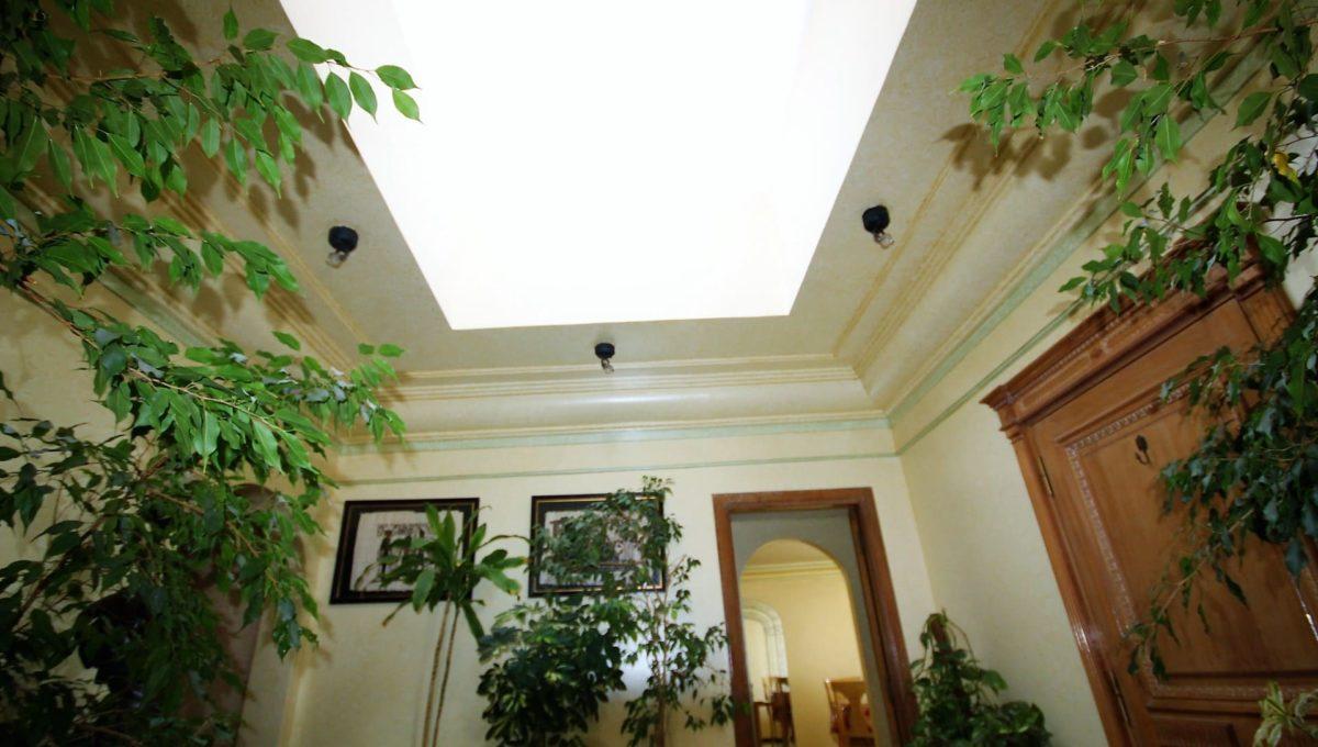 coeur-de-racine-luxueux-penthouse-avec-terrasse-266-m2_1364