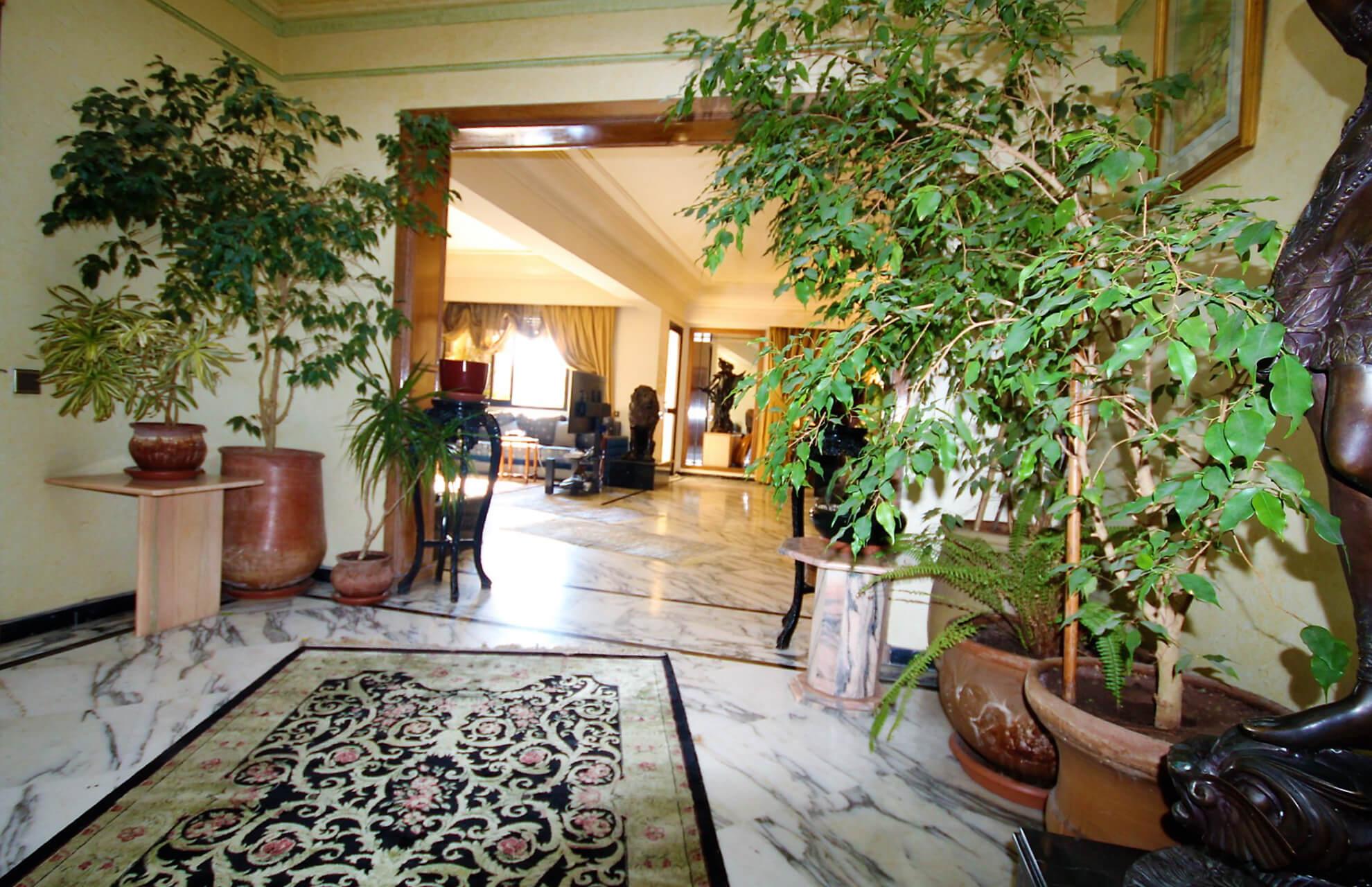 Cœur de Racine Luxueux Penthouse avec immense terrasse