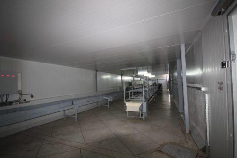 unite-industrielle-moderne-de-stockage-froid-et-de-distribution-a-vendre-location-possible-004