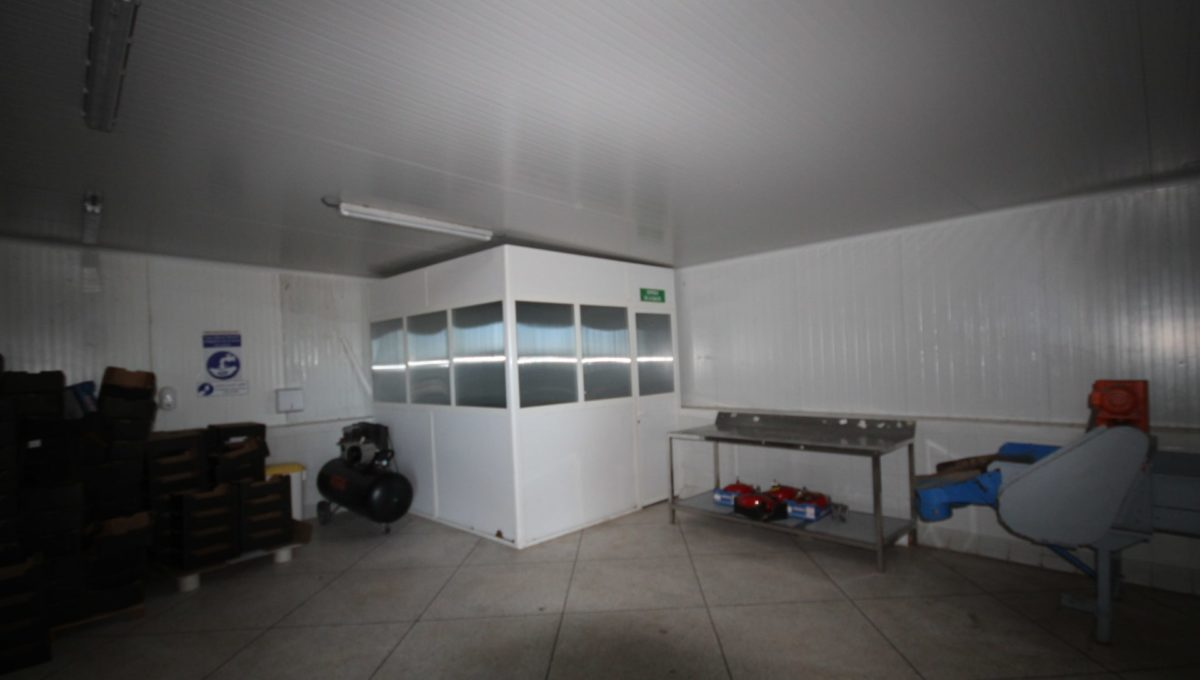 unite-industrielle-moderne-de-stockage-froid-et-de-distribution-a-vendre-location-possible-005