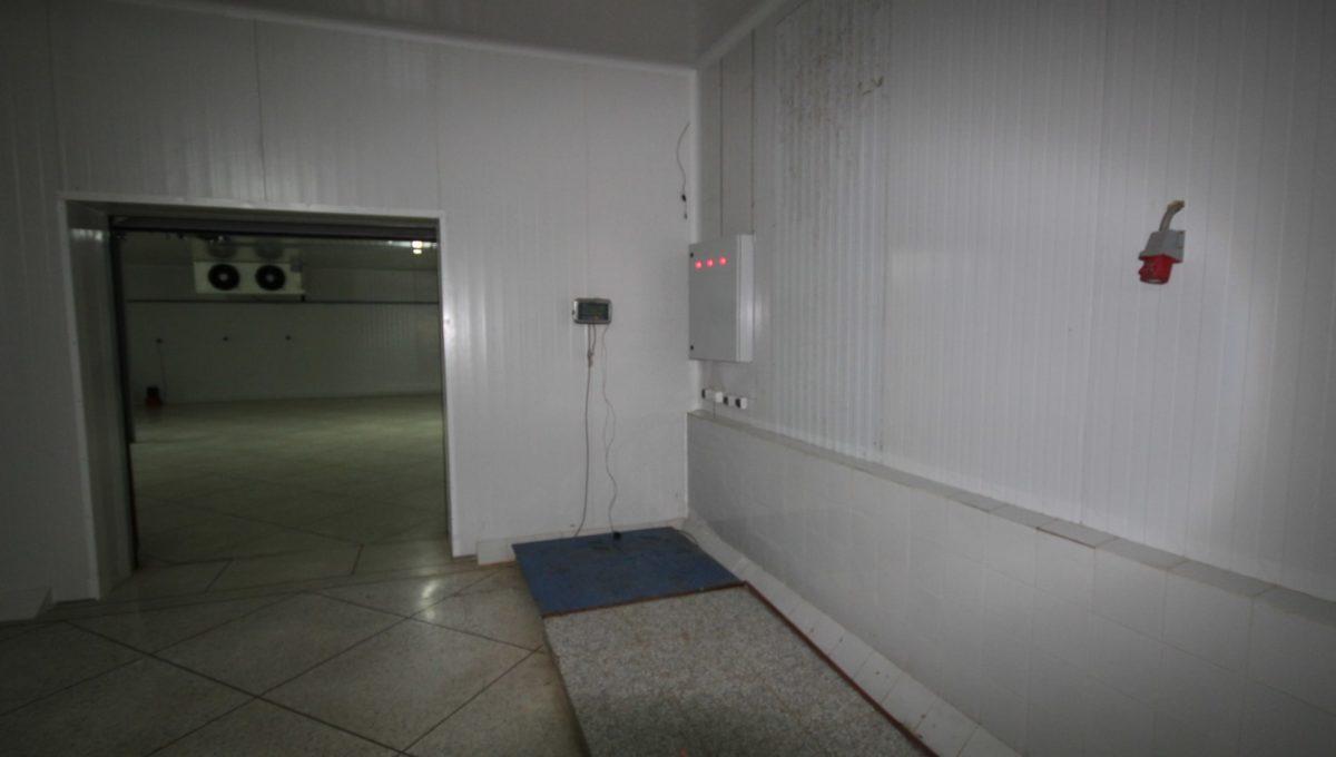 unite-industrielle-moderne-de-stockage-froid-et-de-distribution-a-vendre-location-possible-006