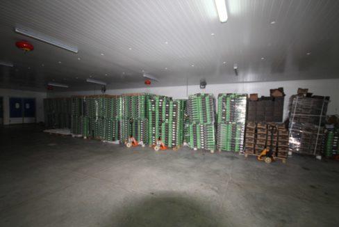 unite-industrielle-moderne-de-stockage-froid-et-de-distribution-a-vendre-location-possible-017