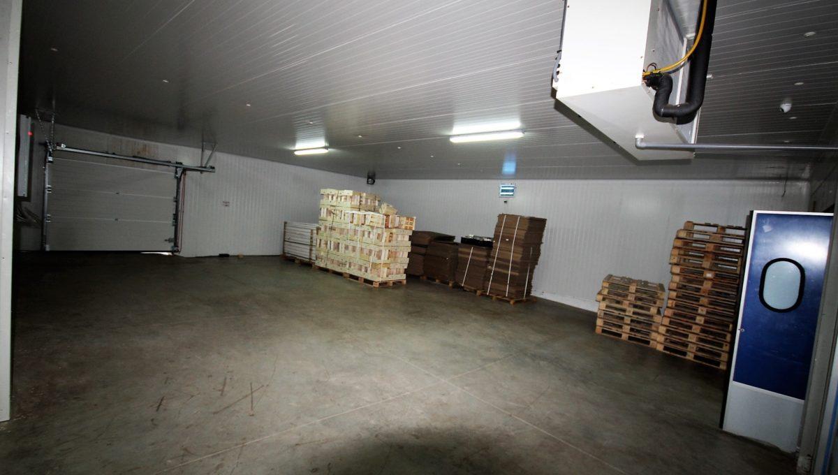 unite-industrielle-moderne-de-stockage-froid-et-de-distribution-a-vendre-location-possible-022