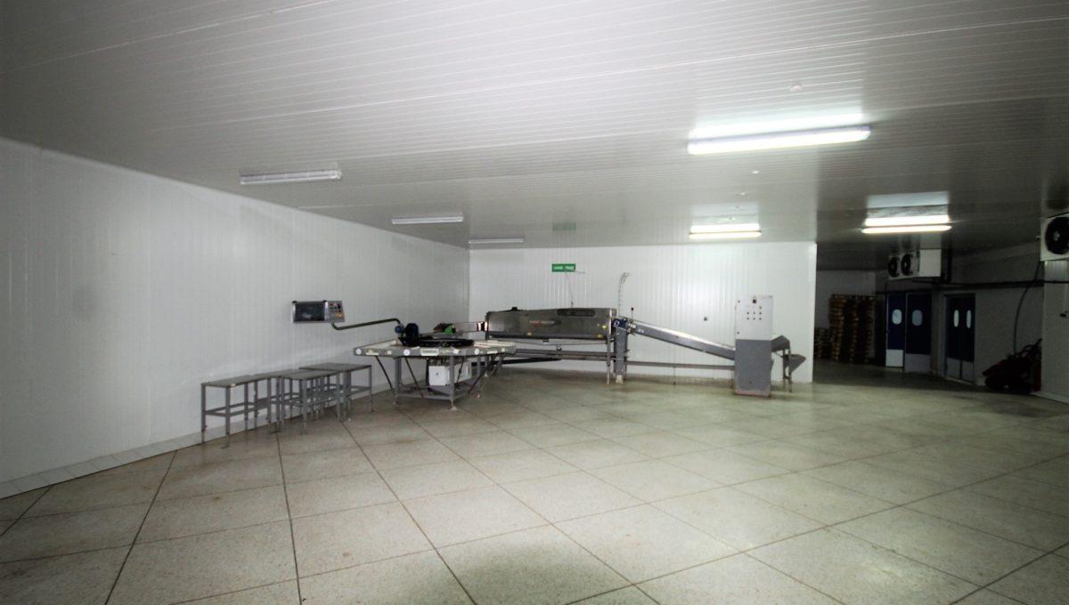 unite-industrielle-moderne-de-stockage-froid-et-de-distribution-a-vendre-location-possible-023