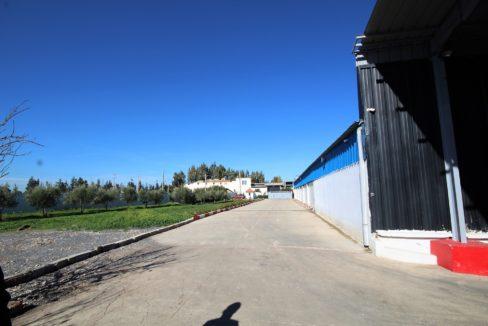 unite-industrielle-moderne-de-stockage-froid-et-de-distribution-a-vendre-location-possible-026
